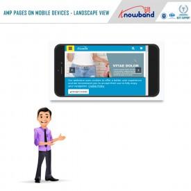 Przyspieszone strony mobilne (AMP) - Dodatki Prestashop